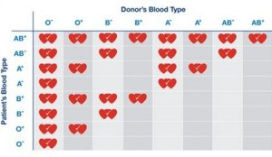Donor's blood
